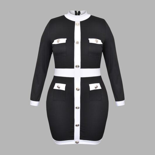 Turtleneck Dress Plus Size w/Sleeves